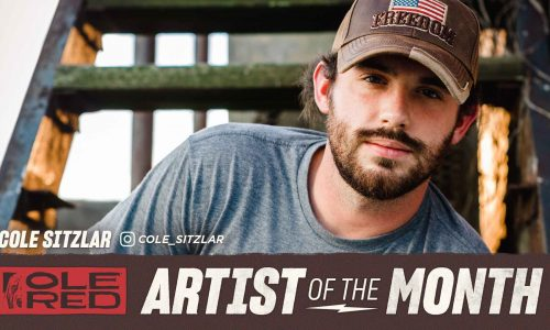 Cole Sitzlar – November 2019 Artist of the Month