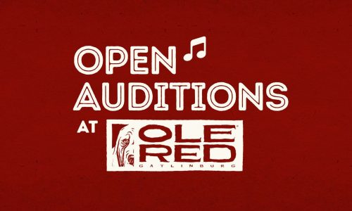 Calling All Musicians: Open Auditions